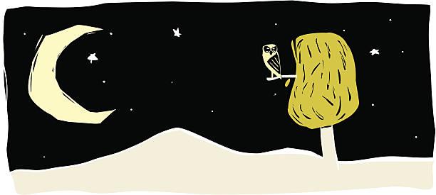 księżyc i sowa. brazylijski cordel styl (xilography - sznurek stock illustrations