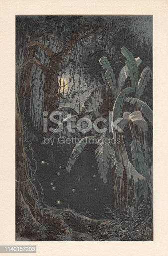 Moonlit night in the tropics with swarming fireflies (Cucujo). Chromolithograph, after a drawing, published in 1898.