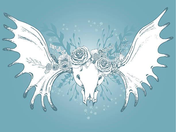 moose череп еще-жизни. - four seasons stock illustrations