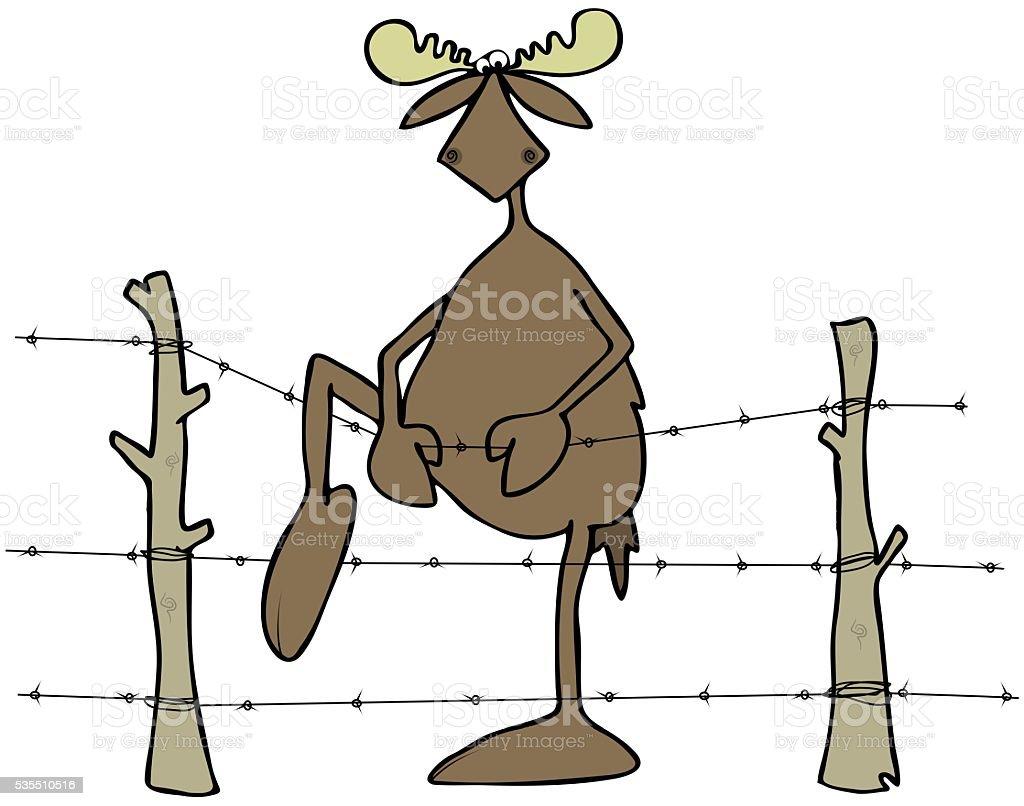 Elch Schritt über Eine Stacheldraht Zaun Stock Vektor Art und mehr ...