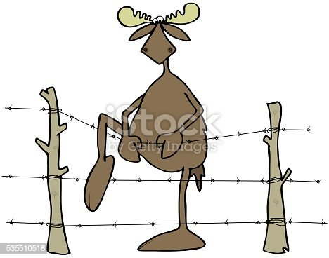 Moose Stepping Over A Barbed Wire Fence Stock Vector Art & More ...