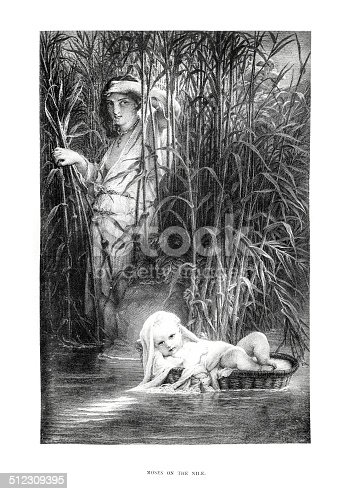 Moses on the Nile- Antique Engraving