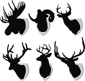Six mounted animal silhouettes. Very detailed.