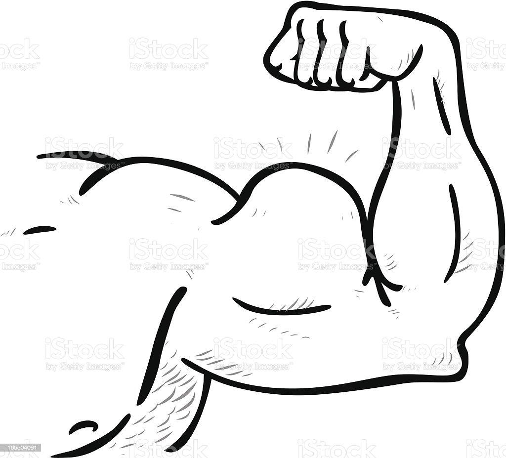 royalty free cartoon muscle arms clip art vector images rh istockphoto com Women Cartoon Muscle Arms draw cartoon muscle arm
