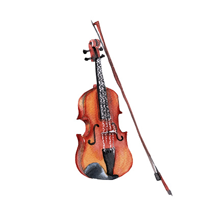 Musical instruments. Violin. Isolated on white background.