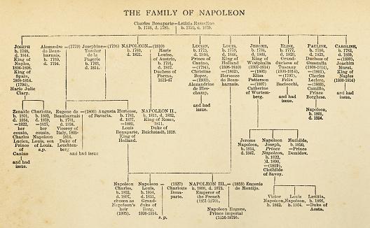 Napoleon Bonaparte's Family Tree - 19th Century