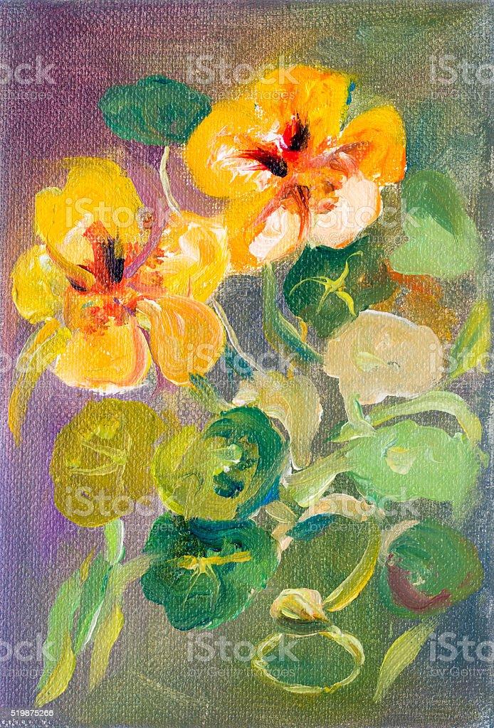 Nasturtium flowers oil painting vector art illustration