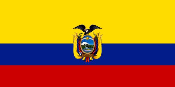 ilustraciones, imágenes clip art, dibujos animados e iconos de stock de bandera nacional de ecuador. - bandera de ecuador