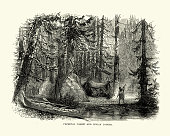Vintage engraving of Native American lodges in the primeval forest, North America, 18th Century