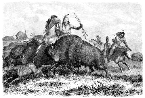 Native americans hunting buffalos with bow and arrow 1862