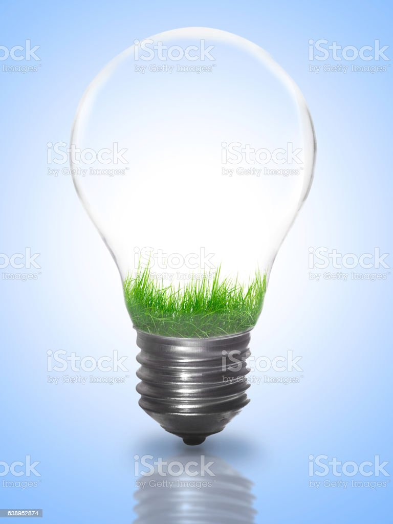 Natural energy. Lightbulb with summer meadow - Illustration vectorielle