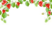 Natural Strawberry frame