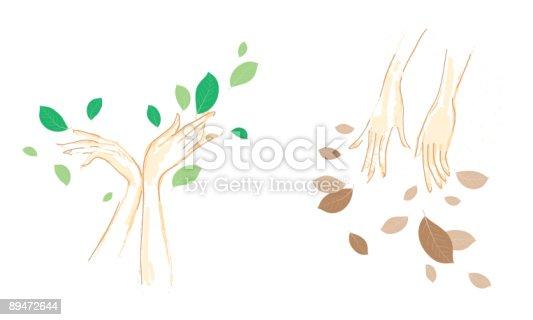Natura - Immagini vettoriali stock e altre immagini di Ambiente 89472644