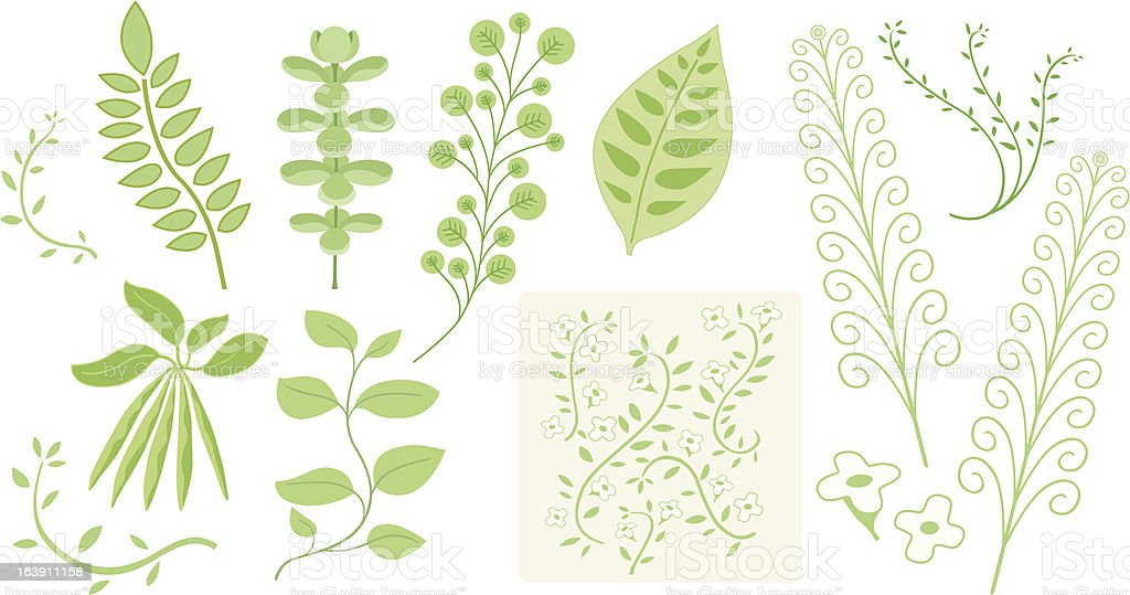 nature objects vector art illustration