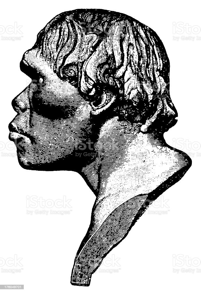 Neanderthal head   Antique Scientific Illustrations vector art illustration