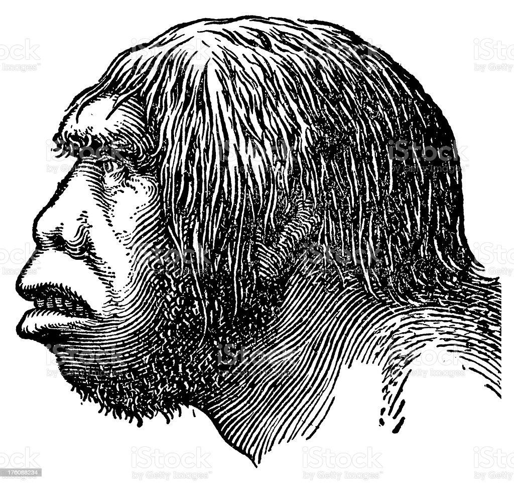 Neanderthal head | Antique Scientific Illustrations royalty-free stock vector art