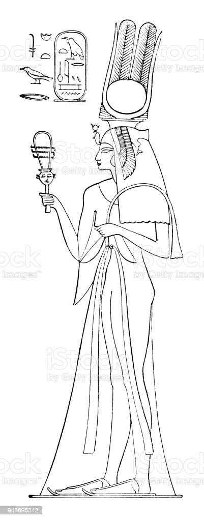 Nefertari, great royal wife of Rameses vector art illustration