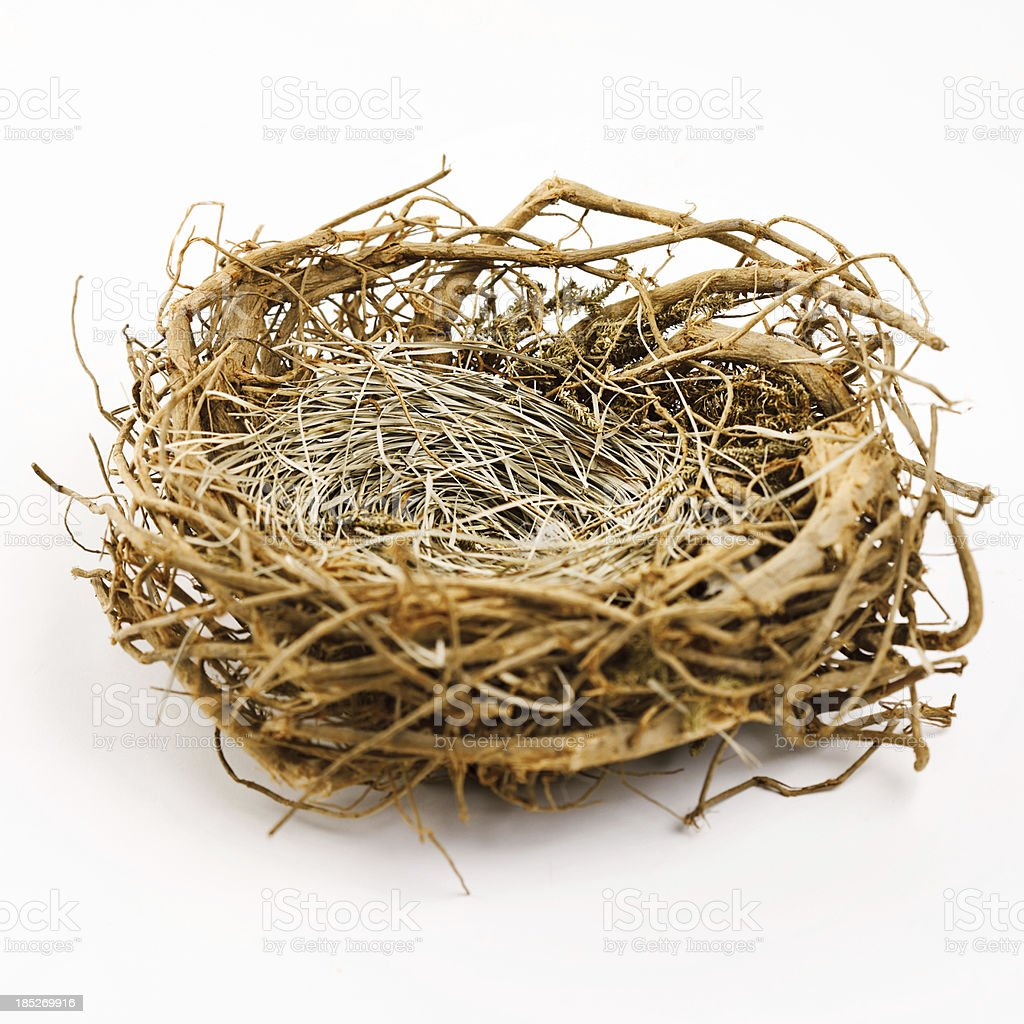 Nest royalty-free nest stock vector art & more images of animal