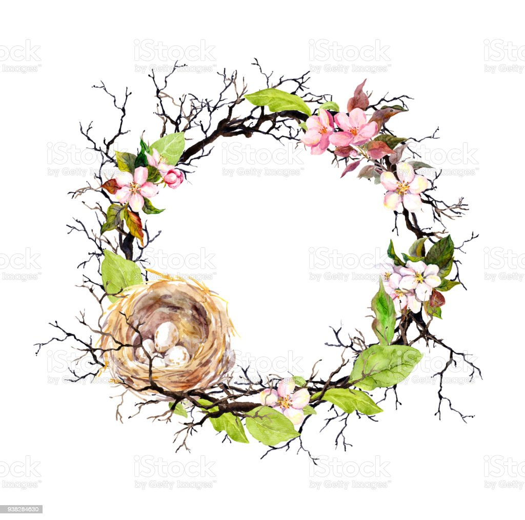 Nest With Eggs Spring Blossom Flowers Branches And Green