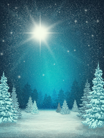 night background with winter landscape . snowy trees, stars  and falling snowflakes