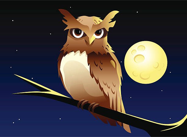 night owl - great horned owl stock illustrations, clip art, cartoons, & icons