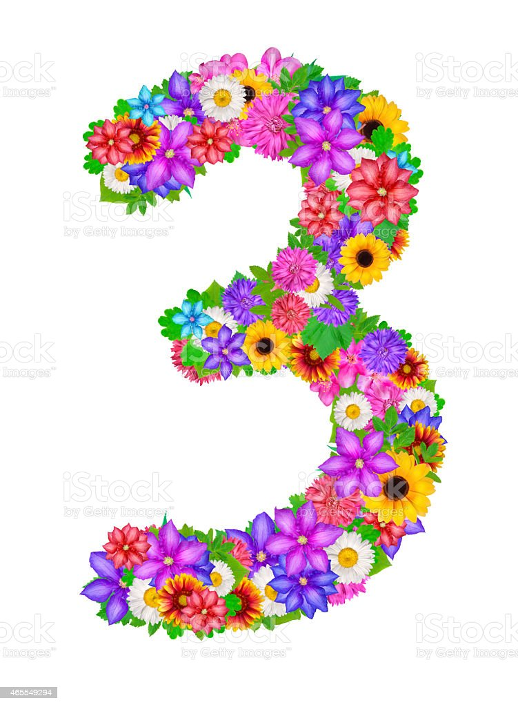 Number 3 Made From Flowers Stock Illustration