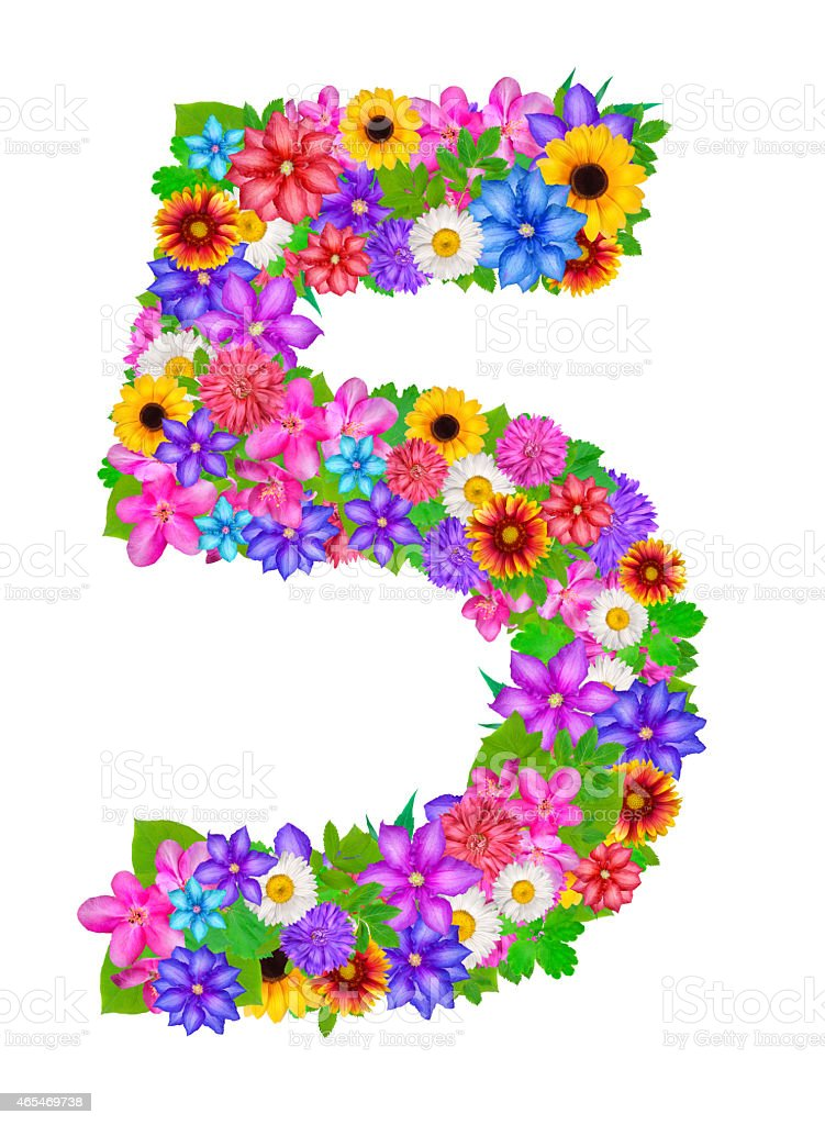 Number 5 Made From Flowers Stock Illustration - Download Image Now