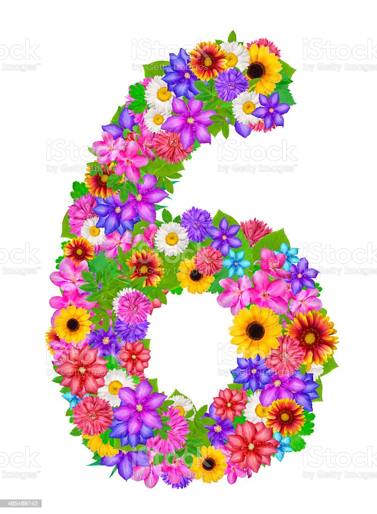 Number 6 Made From Flowers Stock Vector Art  U0026 More Images Of 2015 465469742