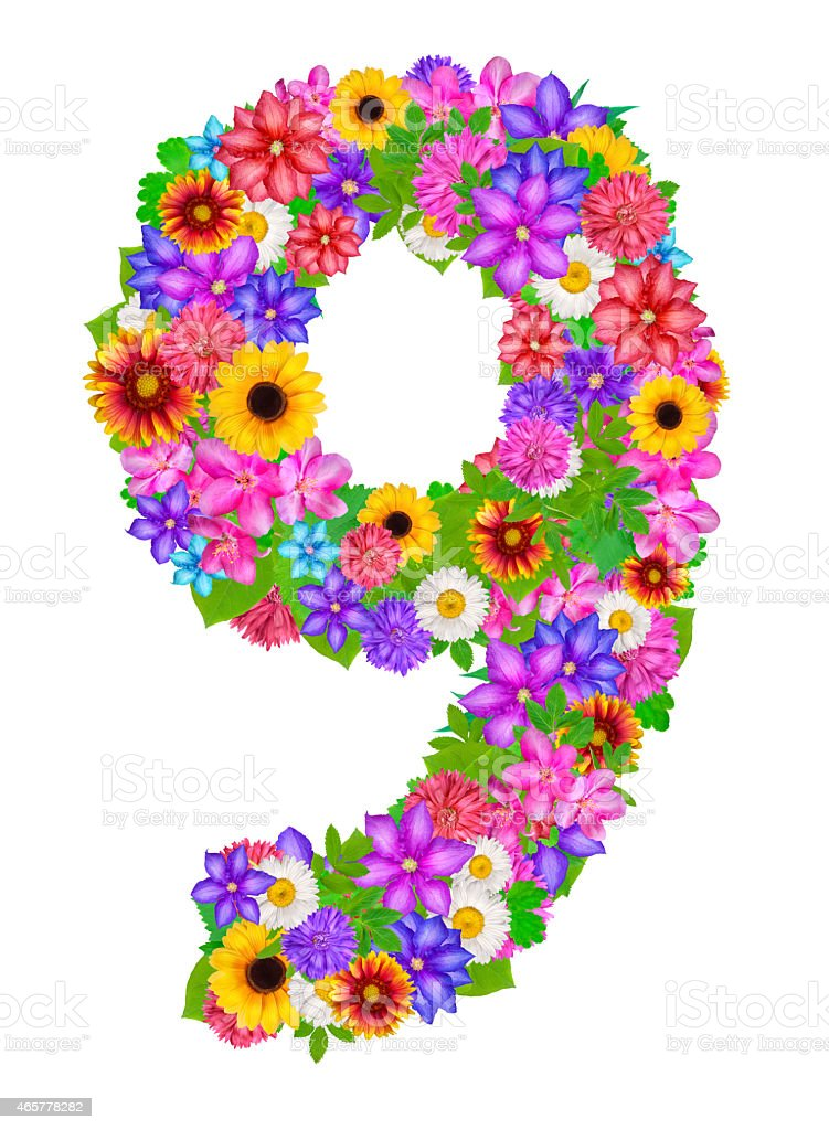 Number 9 Made From Flowers Stock Illustration - Download Image Now