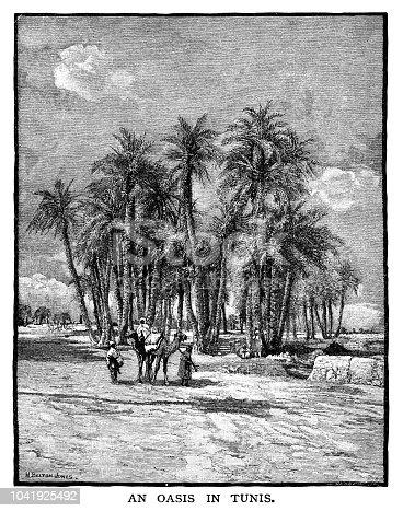 Oasis in Tunis - Scanned 1882 Engraving