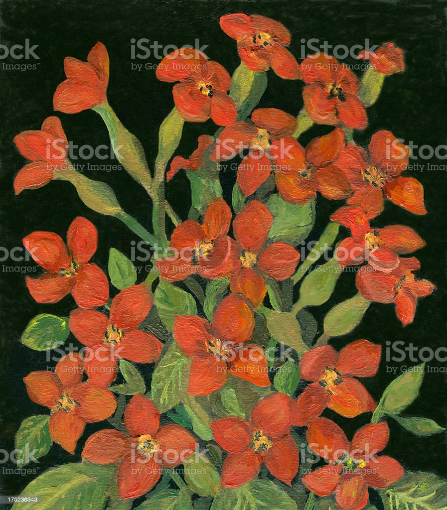 l gemalt kalanchoe blumen stock vektor art und mehr bilder von blume 175236343 istock. Black Bedroom Furniture Sets. Home Design Ideas