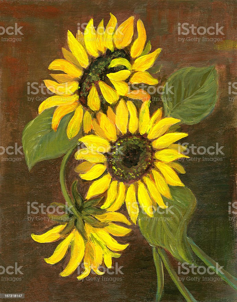 Oil painted three sunflowers arrangement on greenish-brown background royalty-free stock vector art