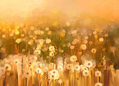 Oil painting daisy-chamomile flowers field  background