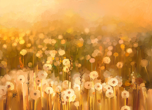 Oil Painting Daisychamomile Flowers Field Background Stock Illustration - Download Image Now