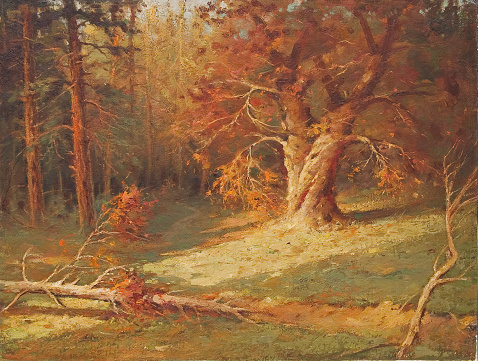 Oil painting showing a deep forest on a sunny autumn day.