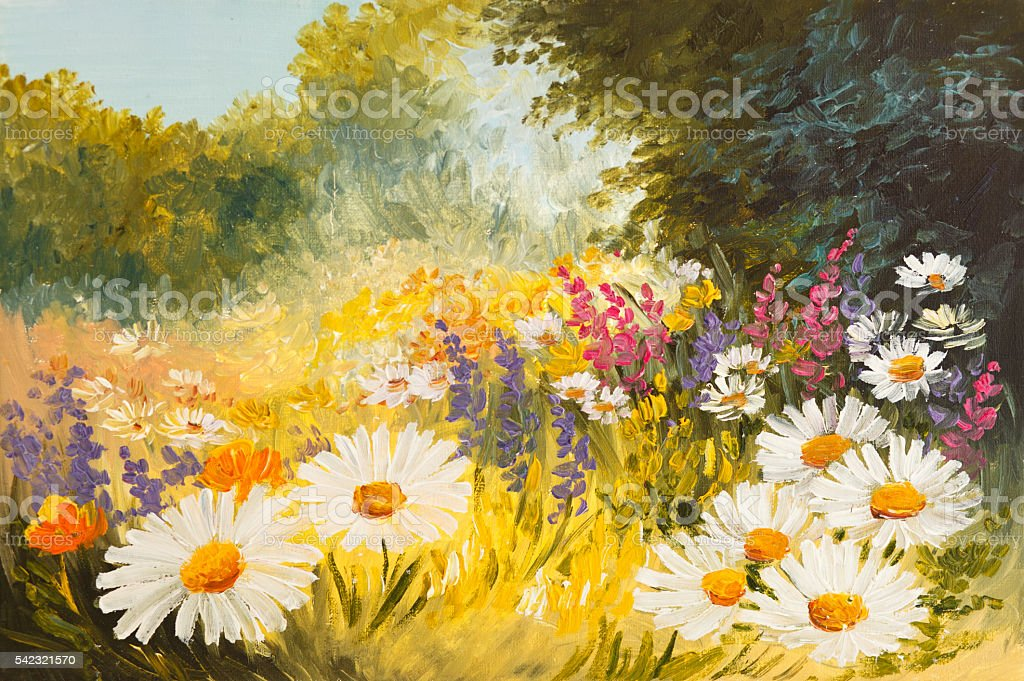 Oil Painting - field of daisies. colorfull art drawing vector art illustration