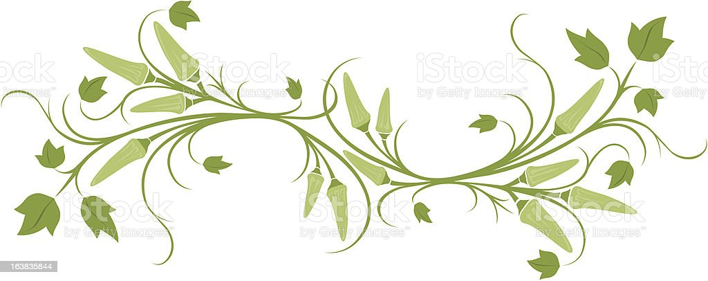 okra banner vector art illustration