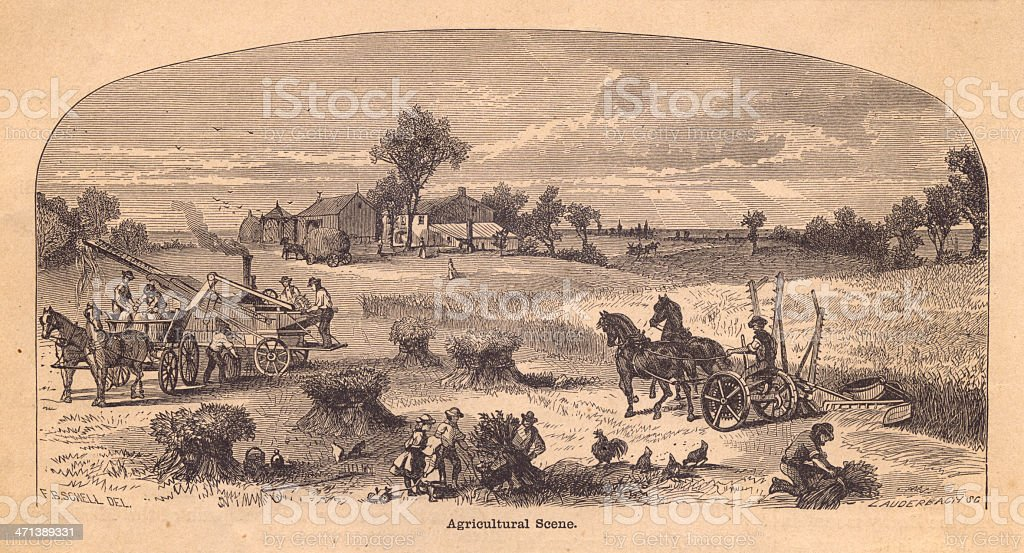 Old, Black and White Illustration of Agricultural Scene, From 1800's royalty-free old black and white illustration of agricultural scene from 1800s stock vector art & more images of adult