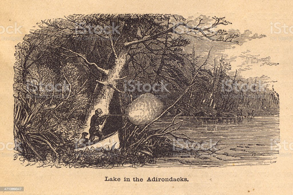 Old, Black and White Illustration of Lake in Adirondacks, 1800's vector art illustration