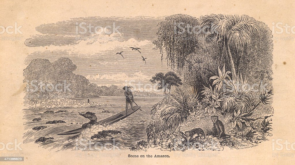 Old Black and White Illustration of Scene on Amazon River vector art illustration