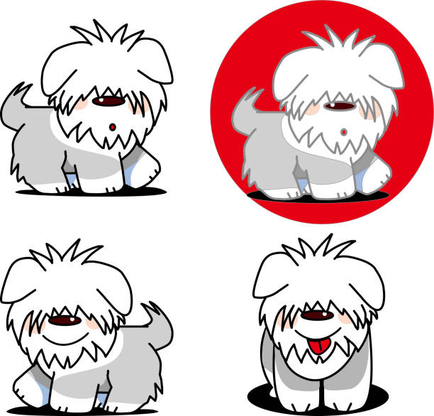 Best Old English Sheepdog Illustrations, Royalty-Free Vector Graphics & Clip Art - iStock
