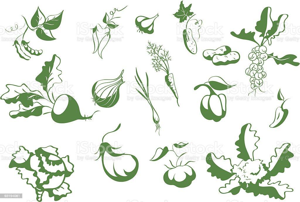 Сontour vegetables royalty-free stock vector art