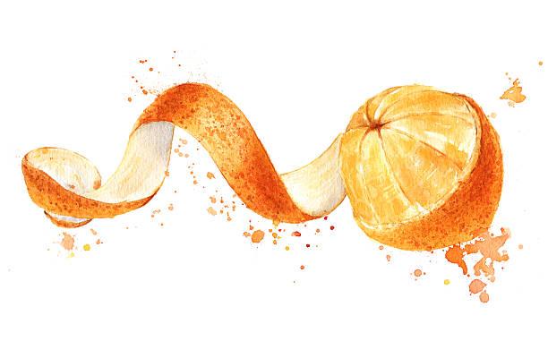 pomarańczowy owoc z obranych spiral skin selektywny, wodne - skórka stock illustrations