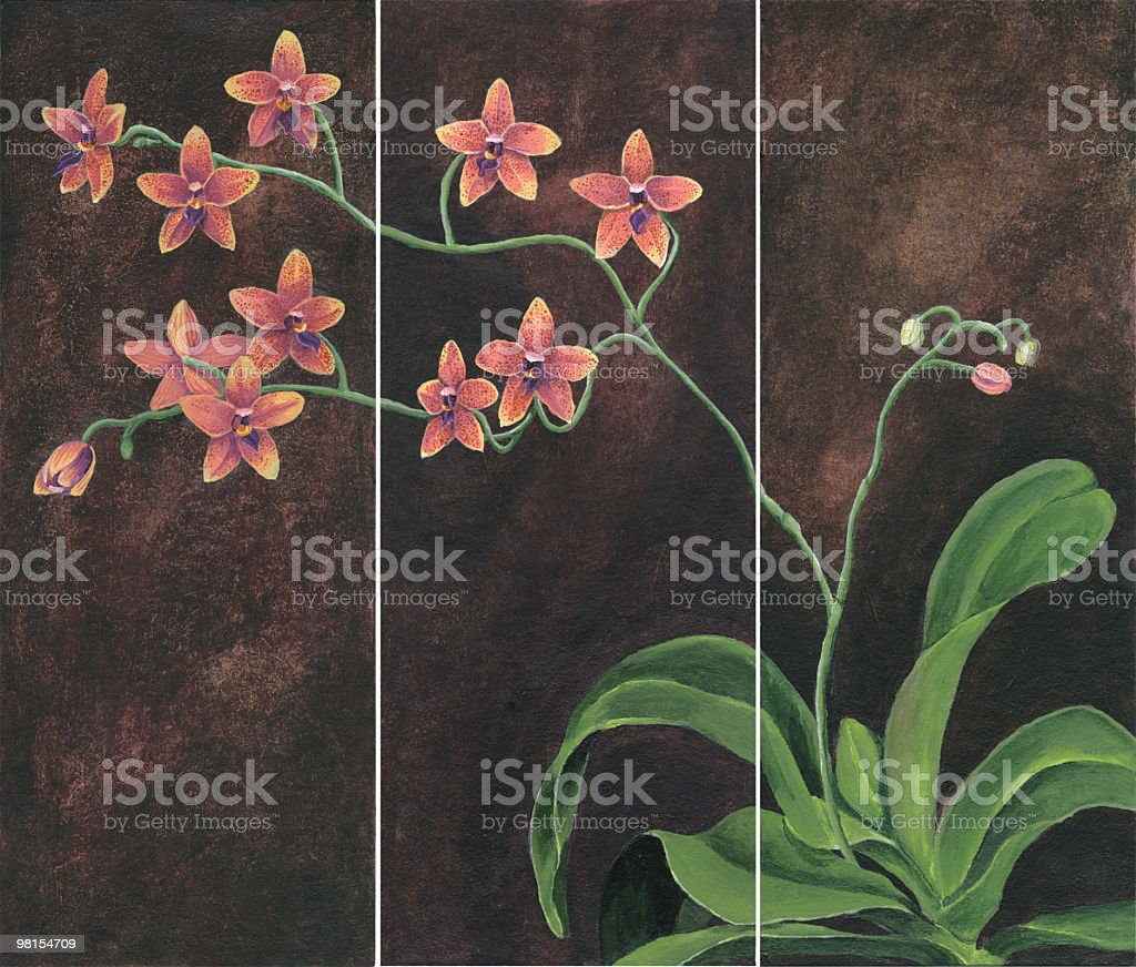 Orchid Painting royalty-free stock vector art