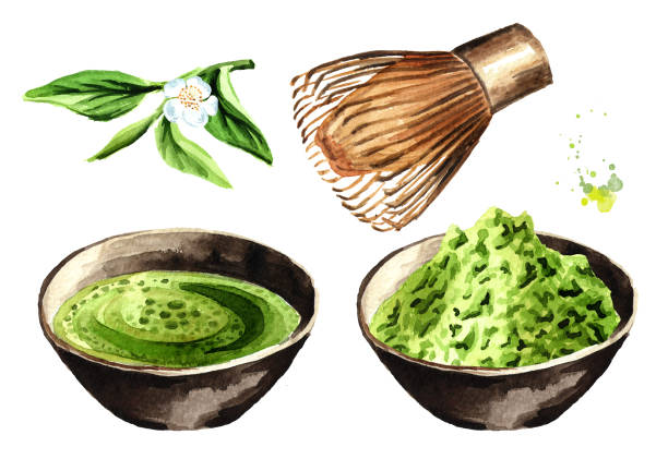 有機の緑抹茶のお茶セット。水彩の手描きイラスト、白い背景で隔離 - 抹茶点のイラスト素材/クリップアート素材/マンガ素材/アイコン素材