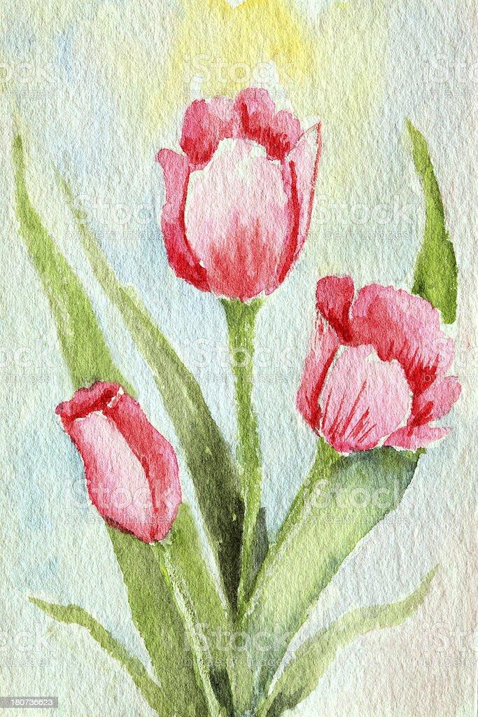 Original Art Watercolor Tulips royalty-free original art watercolor tulips stock vector art & more images of art