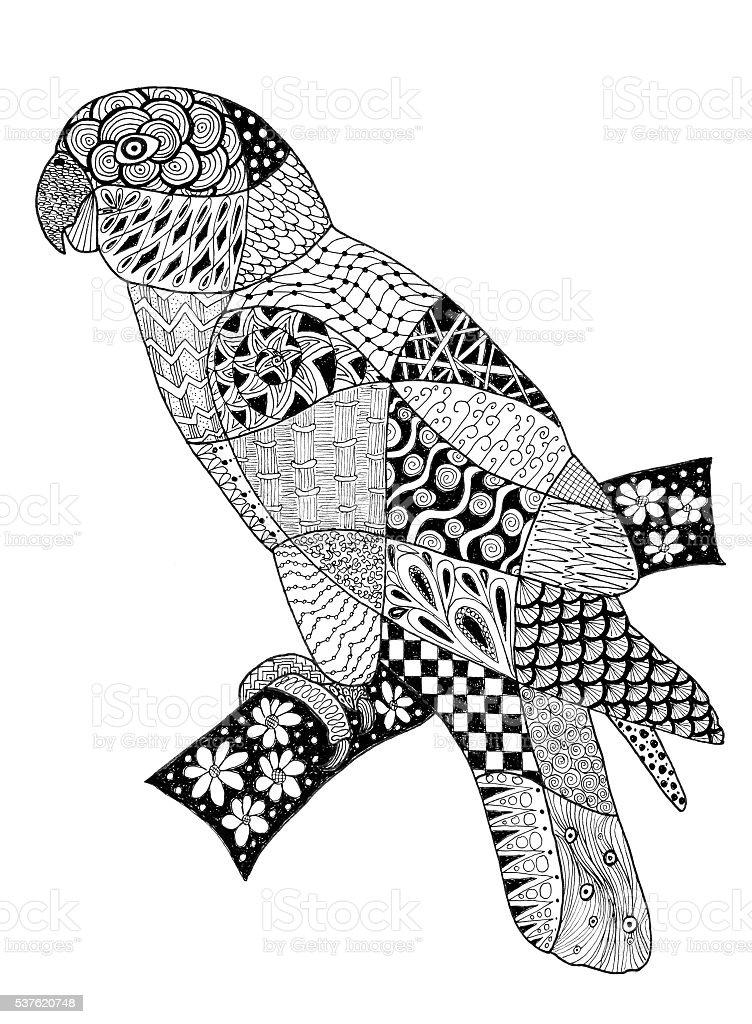 Original drawing of a parrot. vector art illustration
