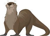 vector cartoon illustration of a happy otter