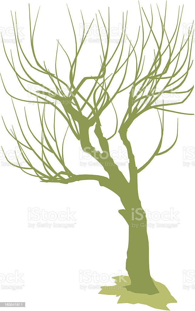 Out Of Leaves Tree(Vector) royalty-free out of leaves tree stock vector art & more images of autumn