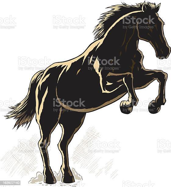 Outline of a horse illustration id163922140?b=1&k=6&m=163922140&s=612x612&h=uo ib8hxws3biwblem136vsjhjce0tswnrmffkp wxw=